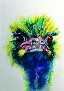 Colorful Ostrich