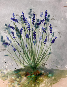 Lavender Fields Tutorial